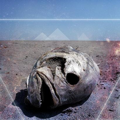 Brain-Fish